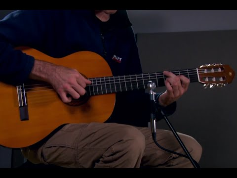 Yamaha C40 Classical Guitar Performance