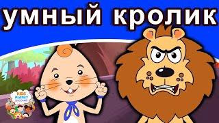 умный кролик русские сказки мультфильм сказки на ночь для детей русские сказки мультфильм