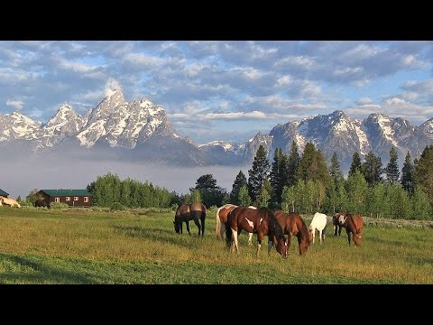 Triangle X Ranch - Jackson Hole, Wyoming