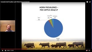Canada's Beef Quality Audit - What have we learned (2017-18) (Webinar recording)