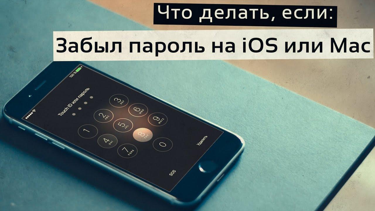 Забыл пароль на iOS или Mac - что делать? Как быстро сбросить пароль блокировки без компьютера?