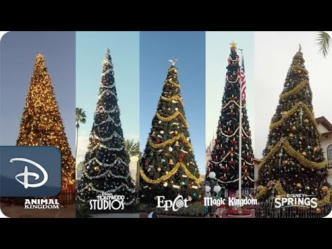 Disney World Releases Timelapse Video of Walt Disney World Resort's Holiday Transformation