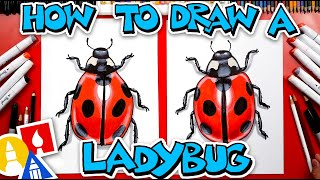 How To Draw A Realistic Ladybug