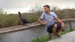 Birding South Florida