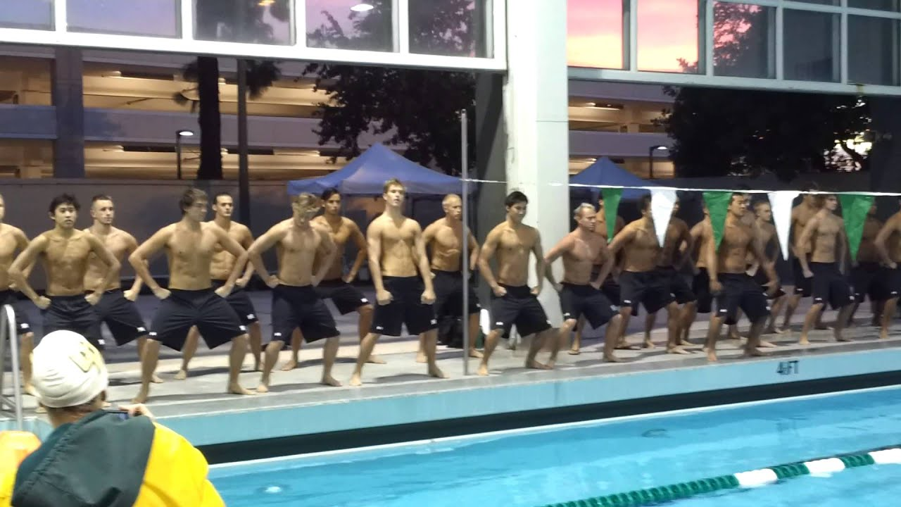 arena invitational swim meet 2013