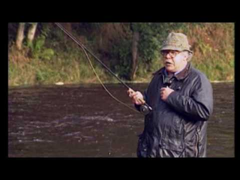Sporting Scene - Fly Fishing And River Bank Entomology P3.