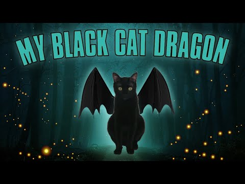 Magic Cats Fly | Cats Flying In The Sky