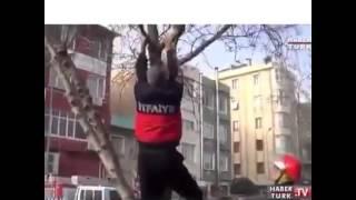 Türkiye'de Ağaçtan Kedi Kurtarma Böyle Olur :)