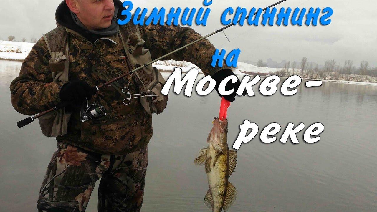 мотосани для зимней рыбалки цена