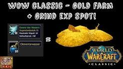 WOW CLASSIC - GOLD FARMEN - ESSENZ DES WASSERS - EXP GRIND SPOT 50+ - BESTER SPOT! REICH WERDEN!