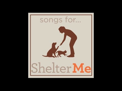 Songs for Shelter Me - World Premiere Music Video