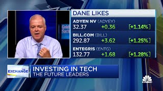 Goldman's Brook Dane on the company's investment in future tech leaders