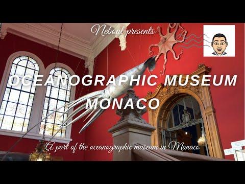 🔴 Live: Inside the oceanographic museum in Monaco
