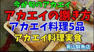 【アカエイの捌き方】【アカエイ料理5品】【実食】今日のお魚🐟何でしょう⁇