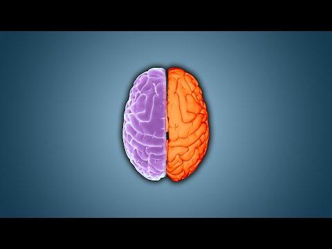 10 choses insensées que votre cerveau sait faire sans e-penser - Ep.20 - e-penser