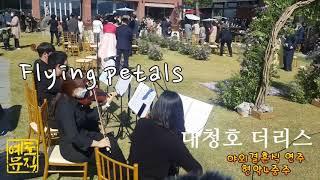 ♬ Flying petals 신랑신부행진 대청호카페 더…