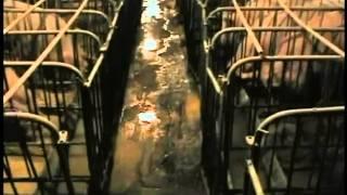 Земляне (отрывок из фильма)