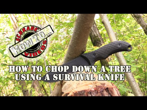 How to Chop Down a Tree Using a Survival Knife