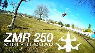 ZMR250 - Race Acro & Fun