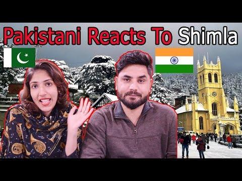 Pakistani Reacts To Shimla |  Shimla City Tour Drive India - Kufri, Mall Road, Jakhu.