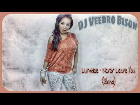 Lumidee  Never Leave You blend