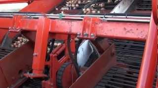 kombajn do marchwi cebuli i ziemniaków