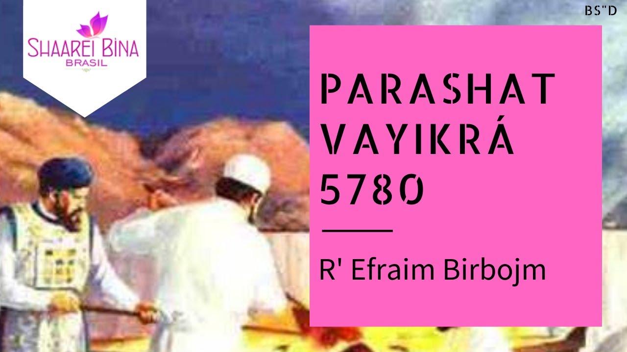 Parashat Vayikrá 5780 - R' Efraim Birbojm - Shaarei Biná Brasil
