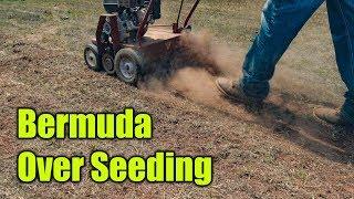 Over Seeding Bermuda Lawn