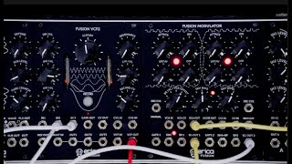 Erica Synths Fusion VCF3 & Fusion Modulator inspired EMS Synthi (no talking )