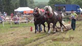 Furmanské preteky: Silné kone v Nálepkove