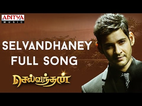 Selvandhaney Full Song || Selvandhan Songs || Mahesh Babu, Shruthi Hasan,Devi Sri Prasad