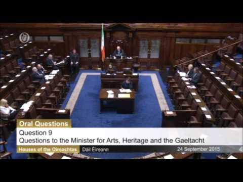 Deputy Terence Flanagan TD questioning Minister of State Joe McHugh TD
