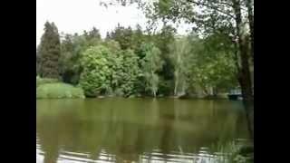 видео тростянецкий дендропарк