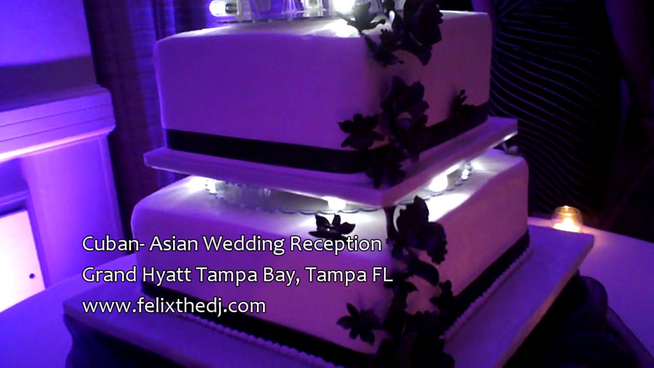 L.E.D. Lit Wedding Cake From Alessi Bakery Tampa, FL   YouTube