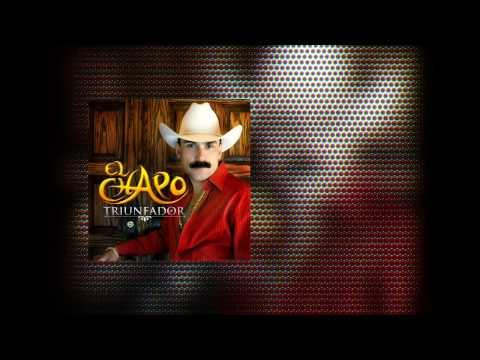 El Chapo de Sinaloa - Te amo (Audio)