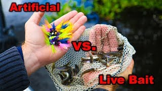 Artificial Vs Live Bait!! What Will WIN?!?