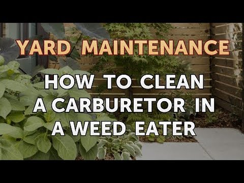 How to Clean a Carburetor in a Weed Eater