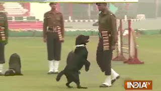 Watch CRPF Women Contingent and Army Dogs Rehearsing for Republic Day Parade