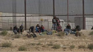 Migrant Caravan Live