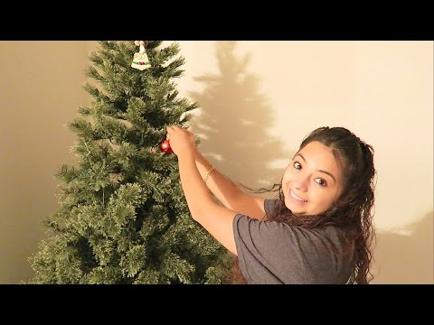 Setting up our first Christmas Tree!
