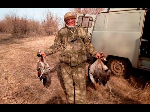 Весенняя охота на гуся Открытие охоты на гуся 2020