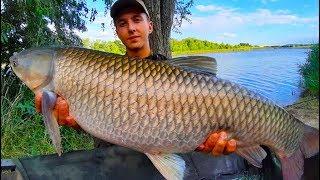 Рыбалка на амура летом на зерно. Поймали своего самого большого амура в жизни