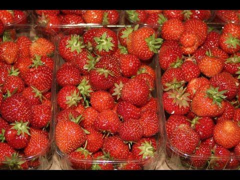 Erdbeermarmelade ohne Zucker. Schritt für Schritt mit Rezept.