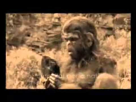 Homo Habilis, Homo Ergaster.mp4