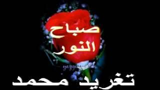 عثمان حسين - ليالى الغربة _ تغريد محمد