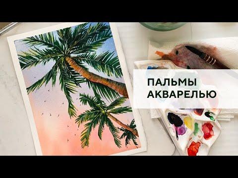 Пальмы на закате / Palm Trees At Sunset