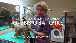 """Отзыв грумера о заточке в студии """"Точилка"""" #1"""