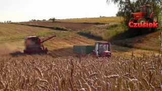 Żniwa 2012 / Deutz Fahr M2385 / Zetor 8540 / HD / Klementowice