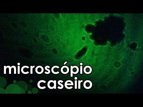 Microscópio caseiro com laser (experiência de Física e Biologia) - Homemade microscope