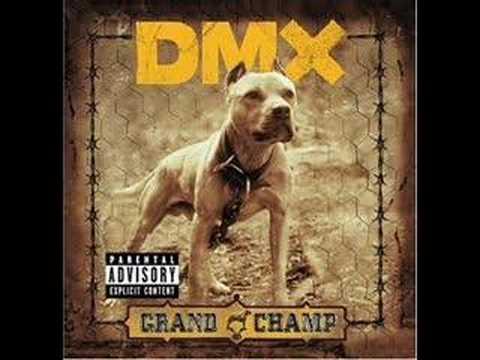 DMX  The Rain